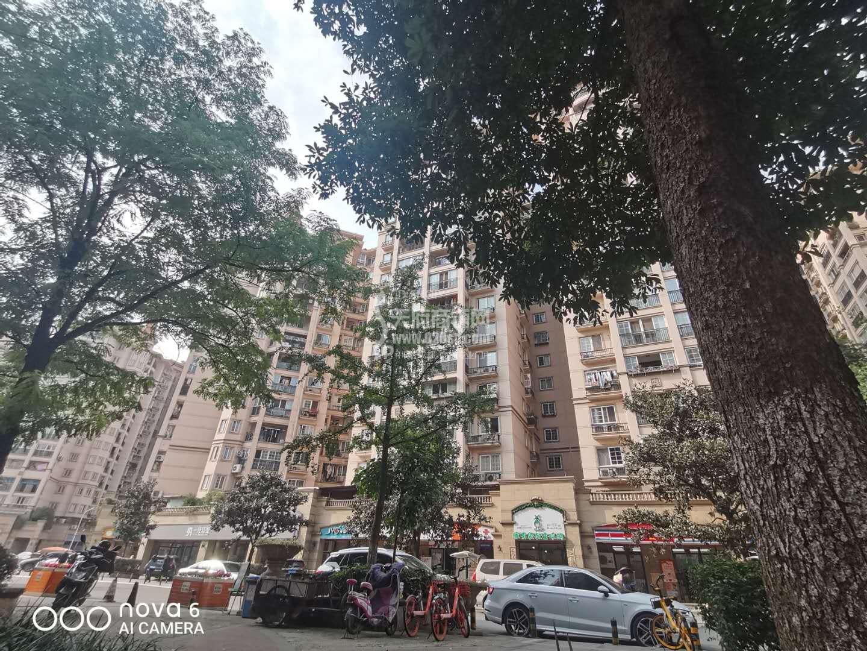 外双楠中华名园小区门口65平128万开间5米低于住房价铺面